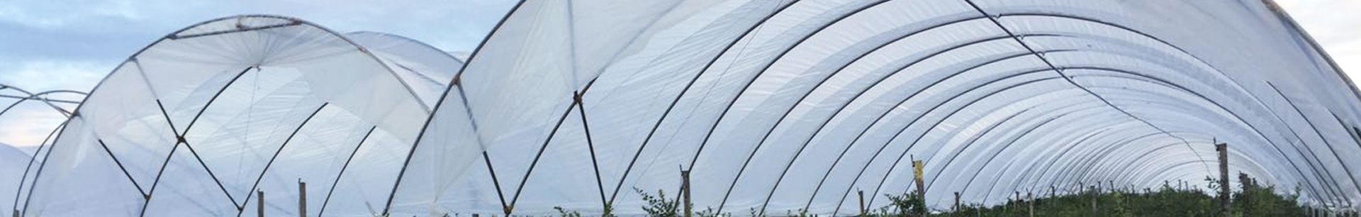 Agrow high tunnel poly hoop house (ACS)2